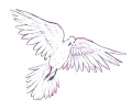 Duiven tattoo voorbeeld Duif 1