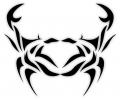 Sterrenbeelden tattoo voorbeeld Kreeft TD