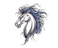 Pegasus tattoo voorbeeld Pegasus 1