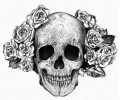 Skulls Zwartwit tattoo voorbeeld Skull and rose