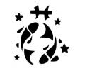 Sterrenbeelden tattoo voorbeeld sterb11