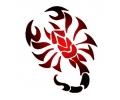 Sterrenbeelden tattoo voorbeeld sterb4