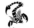 Sterrenbeelden tattoo voorbeeld sterb7