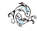 Sterrenbeelden tattoo voorbeeld Visjes