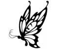 Vlinders tattoo voorbeeld Vlinder