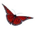 Vlinders tattoo voorbeeld Vlinder Rood